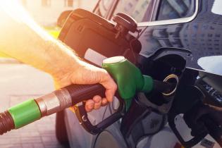 kembangkan-biodiesel-pemerintah-kehilangan-potensi-ekspor-cpo-rp-417-triliun